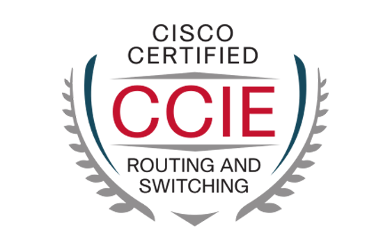 CCIE Routing and Switching BrainDumps Free